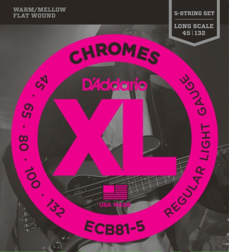 (D'Addario ECB81-5 5-String Bass Guitar Strings, Light, 45-132, Long Scale)