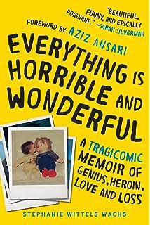 everything is horrible and wonderful a tragicomic memoir of genius heroin love