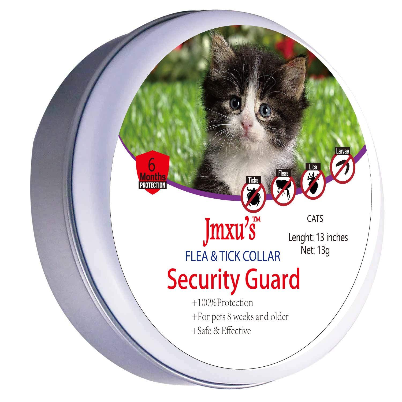 WeiLi Collar Antiparasitario para Gatos contra Pulgas, Garrapatas y Mosquitos,180 DÍAS: Amazon.es: Productos para mascotas