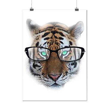 x11 pour tiger