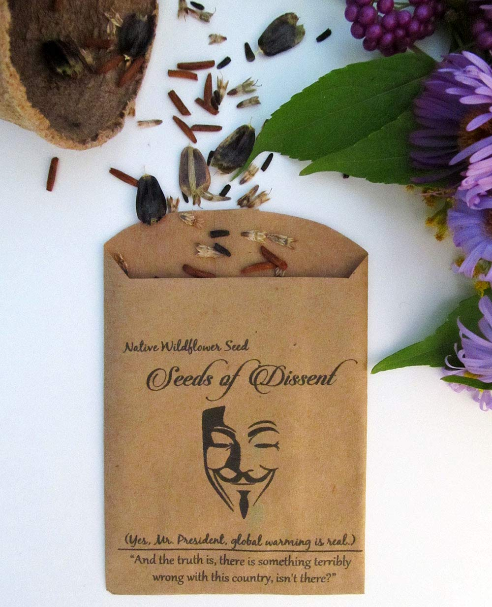 Seeds of Dissent Wildflower Seeds, Not My President Protest Seed, Global Warming Seed Collection, 5 Seed Pack Set, Anonymous Native Flowers