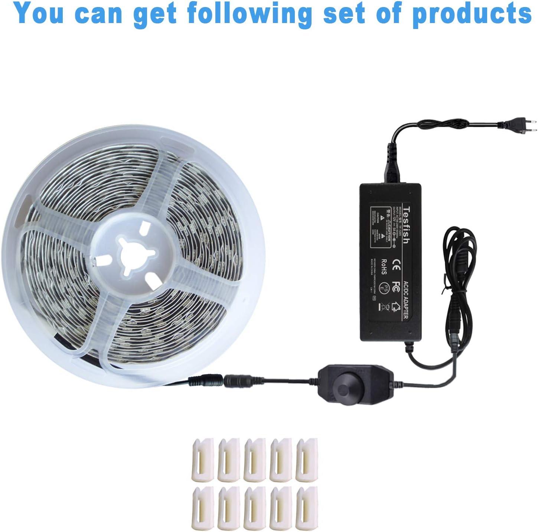 1 pour Plantes dint/érieur Serre Plante Hydroponique Tesfish 12V LED Lampe pour Plante 5M avec Adaptateur Secteur et Gradateur Lampe de Croissance pour Plantes Spectre Complet IP20 5050 Rouge Bleu 4