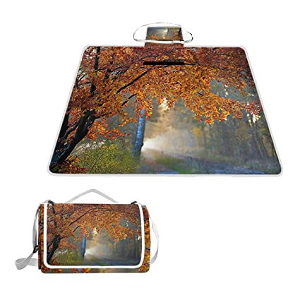 Amazon.com: Autumn Folio Road - Manta de picnic grande para ...