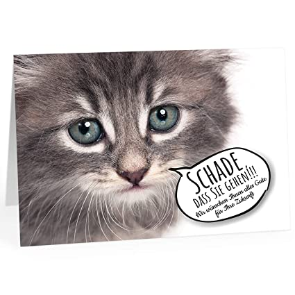 Grandes XXL despedida tarjeta con Sobre/A4/Gato Ojos ...