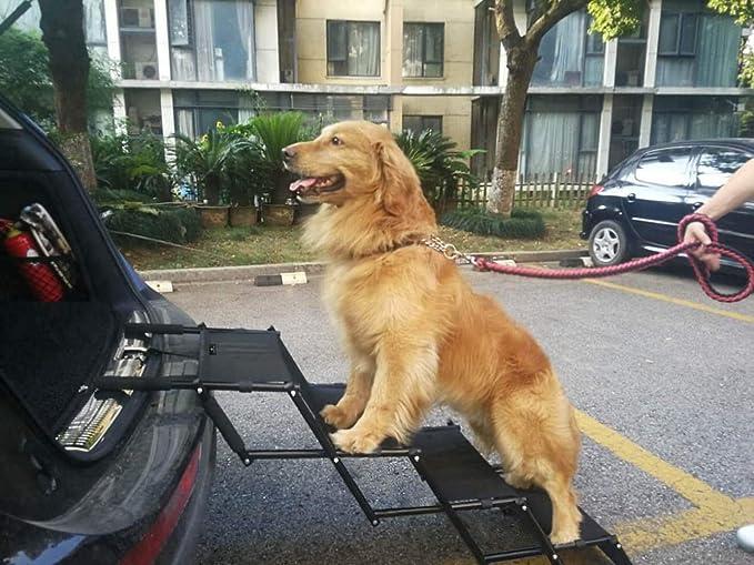 Flightbird Pet Ramp perro coche escaleras soportan 100 libras, altura ajustable marco de acordeón plegable, ligero, portátil, auto grande gato perro escalera para coche camión SUV sofá cama piscina interior al aire
