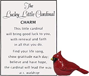 Ganz Lucky Little Cardinal Pocket Charm with Story Card,One Size