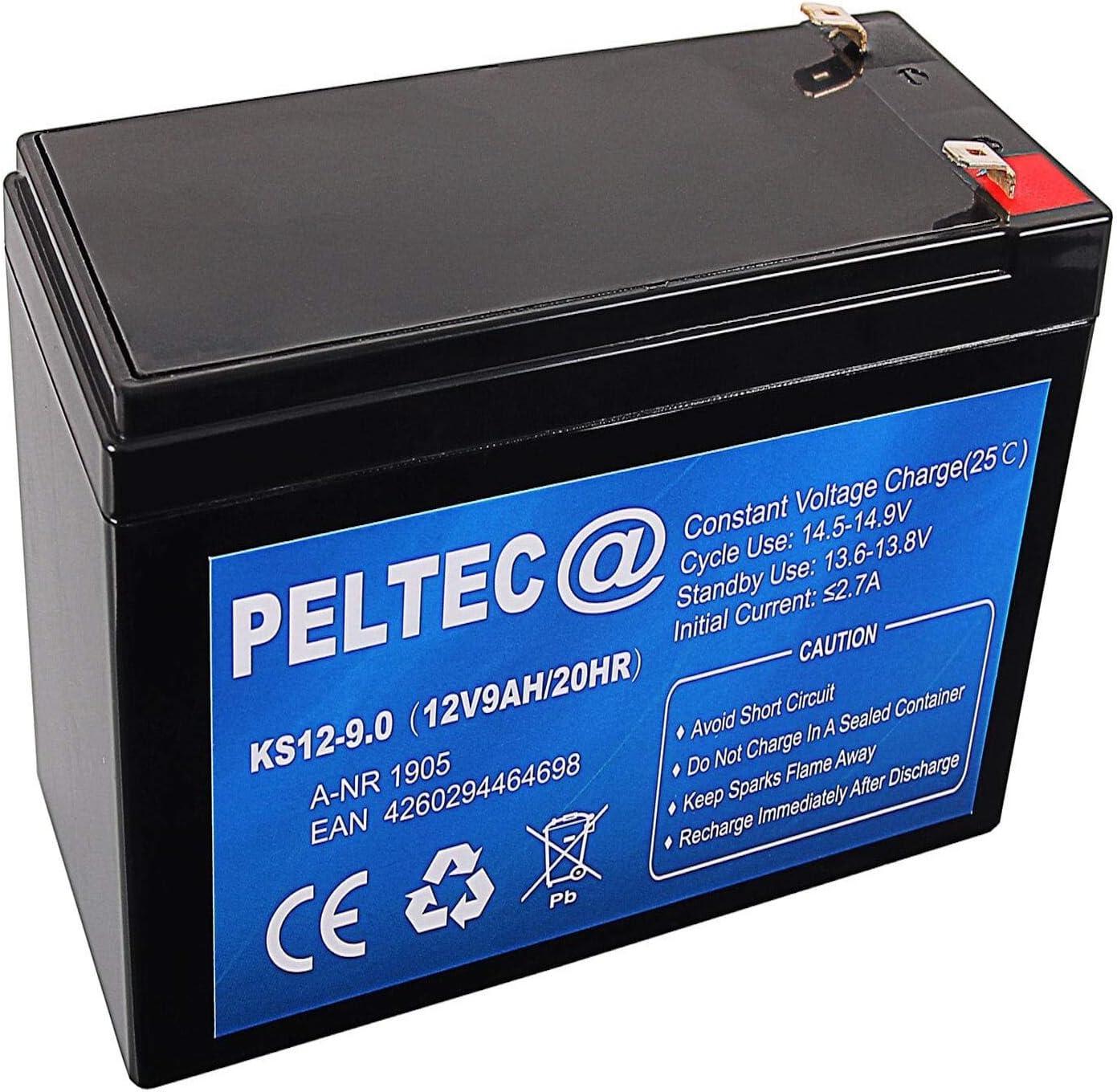 Peltec Premium Blei Agm Vlra Akku Batterie 12v 9ah Elektronik