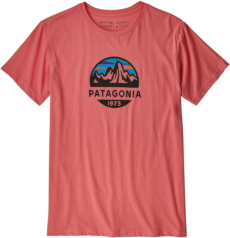 Camiseta Hombre Patagonia Ms Fitz Roy Scope Organic T-Shirt