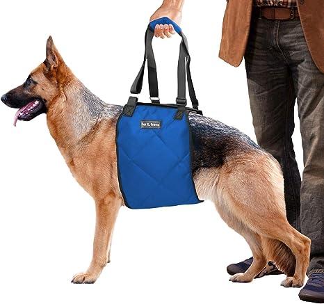 Arnés de elevación para perro, correa ACL, para limpar, ayuda a la ...