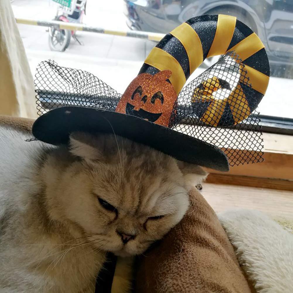 Trajes Halloween Gato Cosplay Sombrero Gorra Calabaza Gatito Perro ...