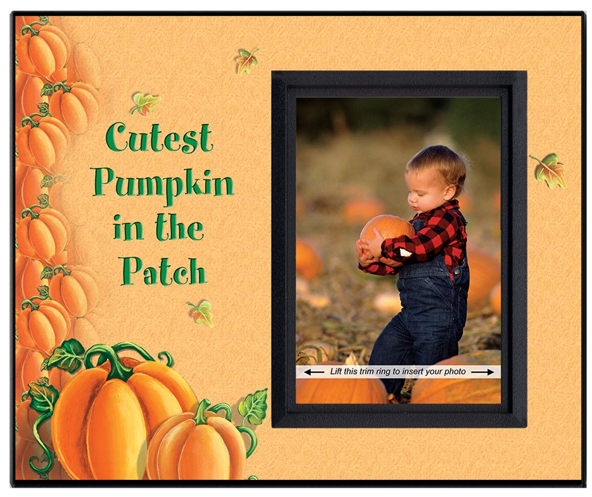 Cutest Pumpkin in The Patch | Pumpkin Design | Photo Frame Keepsake and Tabletop Seasonal Decor, Sized for Desk or nightstand and Measures 8.25'' Wide x 7'' Tall and Holds 3.5'' x 5'' Photo by Expressly Yours! Photo Expressions