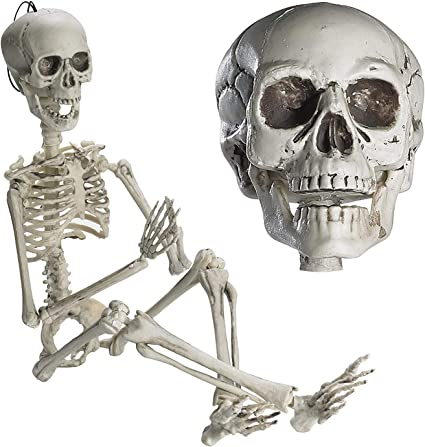 Halloween Skeleton Props Posable Large//Small Skull Decor Outdoor Indoor