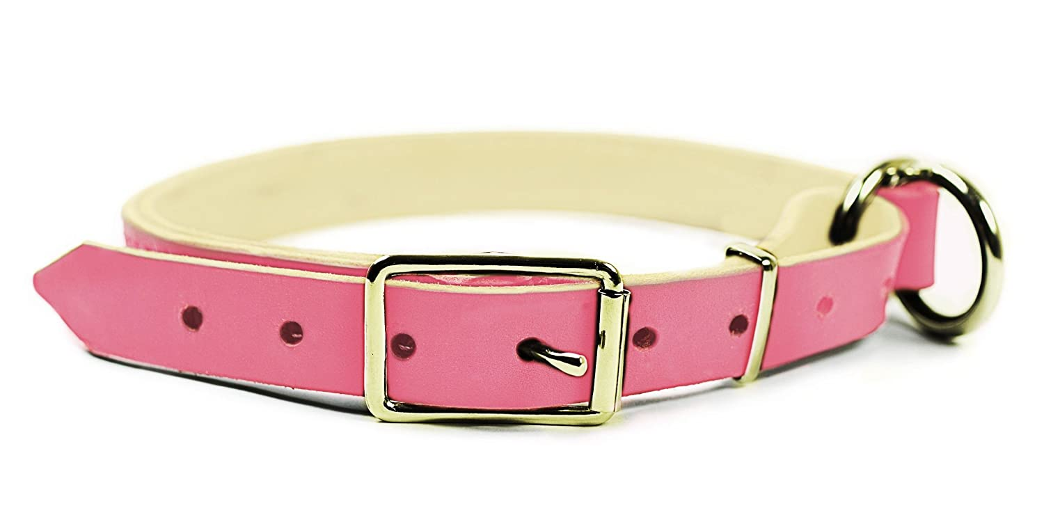 Dean & Tyler  Strictly Business 2-in-1 Dog Choke Collar with Solid Brass Hardware, 30-Inch by 1-Inch, Fits Neck 28-Inch to 32-Inch, Pink