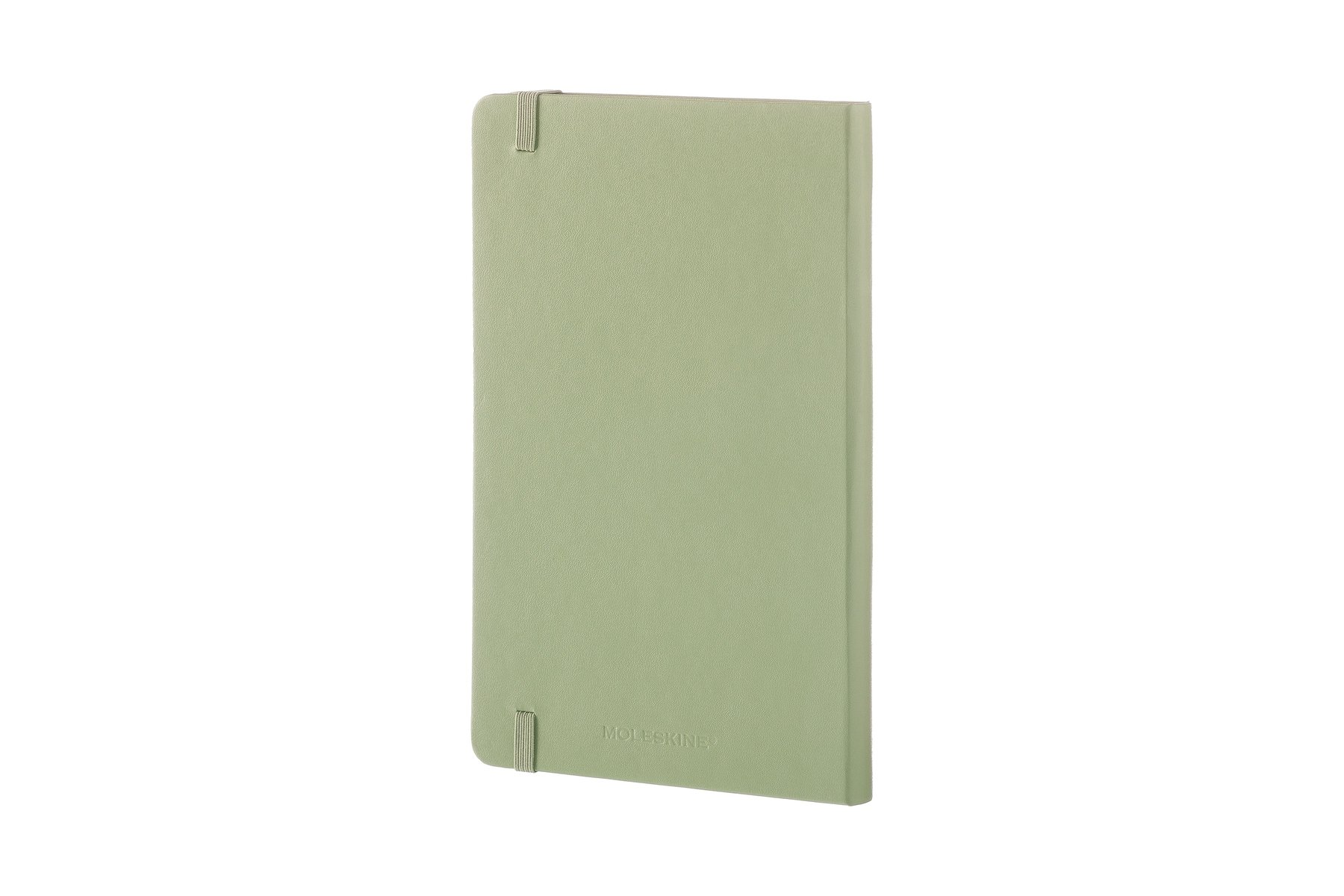 Moleskine Classic Notebook, Large, Ruled, Willow Green, Hard Cover (5 x 8.25) by Moleskine (Image #8)