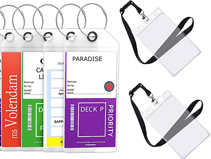 Set of 4 Clear Etag Luggage Holders Zip Seal Steel Loops Thick PVC Cruise Tags