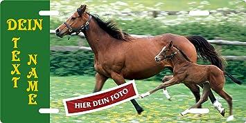 Pferde Boxenschild Türschild Stallschild aus Holz groß