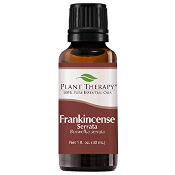 Plant Therapy Frankincense Serrata Essential Oil | 100% Pure, Undiluted,  Natural Aromatherapy,