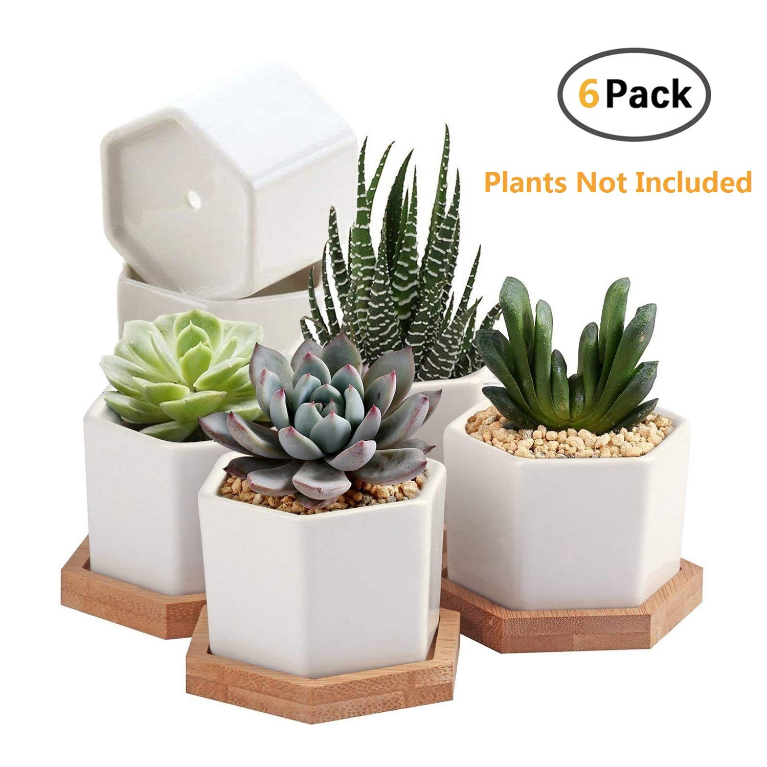 Succulent Pots,OAMCEG 2.75 inch Mini Succulent Plant Pots,Set of 6 White Ceramic Succulent Cactus Planter Pots with Bamboo Tray Plants NOT Included