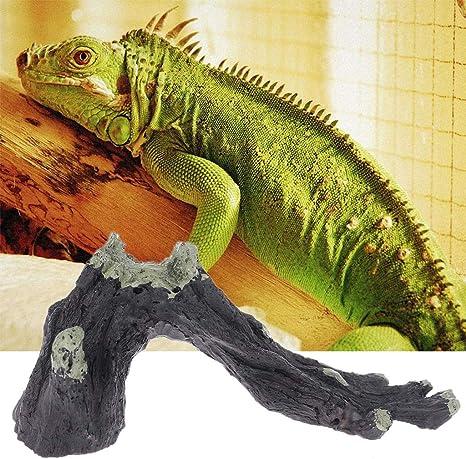 wenjuersty Ramas de resina de reptiles de acuario Decoración ...