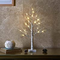 EAMBRITE 2FT 24LT Warm White LED Battery Operated Birch Tree Light with Timer Tabletop Tree Light Jewelry Holder Decor…
