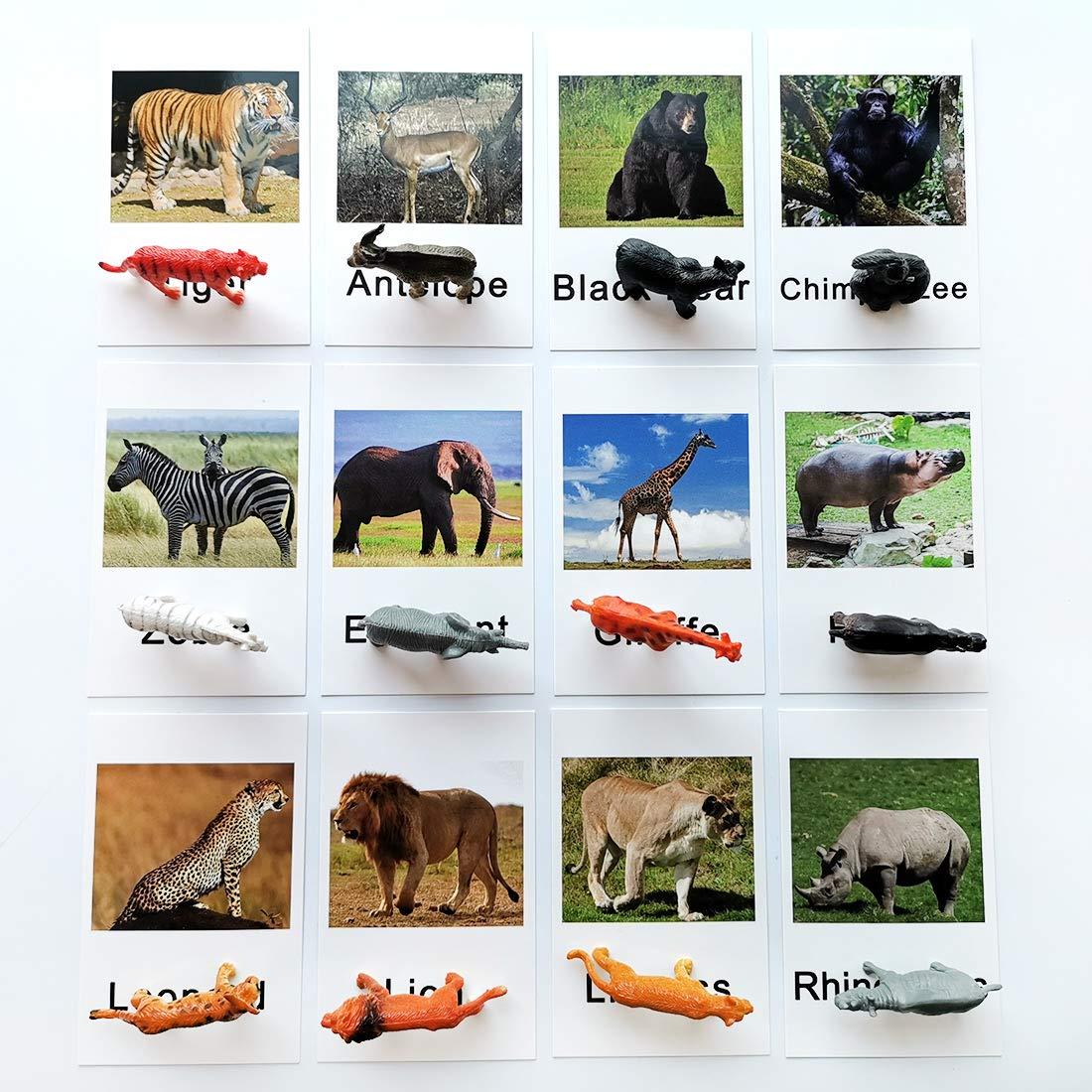 Montessori Zoo Safari Animal Match - Miniature Figurines with 2 Part Matching Cards Montessori Language Materials Preschool Learning Toy NEWTT004