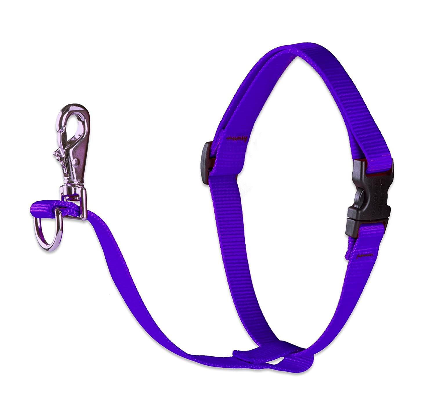 Purple l Purple l Lupine 1-Inch Purple 24 to 38-Inch No Pull Harness for Medium to Large Dogs