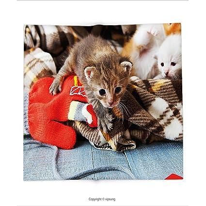vipsung Manta Gatos Gatitos y Manoplas recién Nacidos bebé Animales en un Plain Manta Madera Jugar