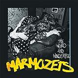 The Weird & Wonderful Marmozet