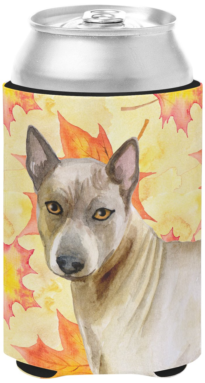 Caroline's Treasures BB9941CC Thai Ridgeback Fall Decorative Can Hugger, Multicolor
