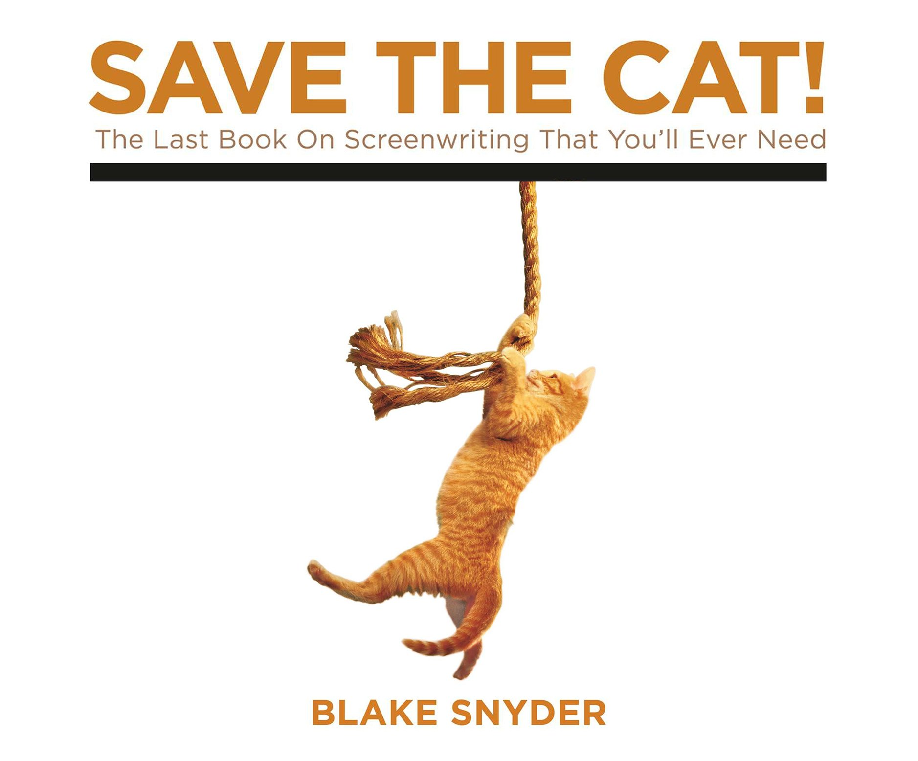 Save the Cat: The Last Book on Screenwriting Youll Ever Need