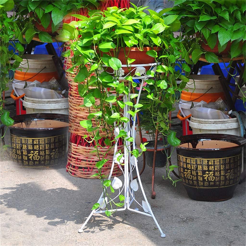 G-ZWJXX Vasi per Fiori in Ferro Art con 1 Confezione, Mensola per Pavimenti di Design Elegante, Cremagliera per Fiori con Decorazione Decorativa per Bonsai da Giardino