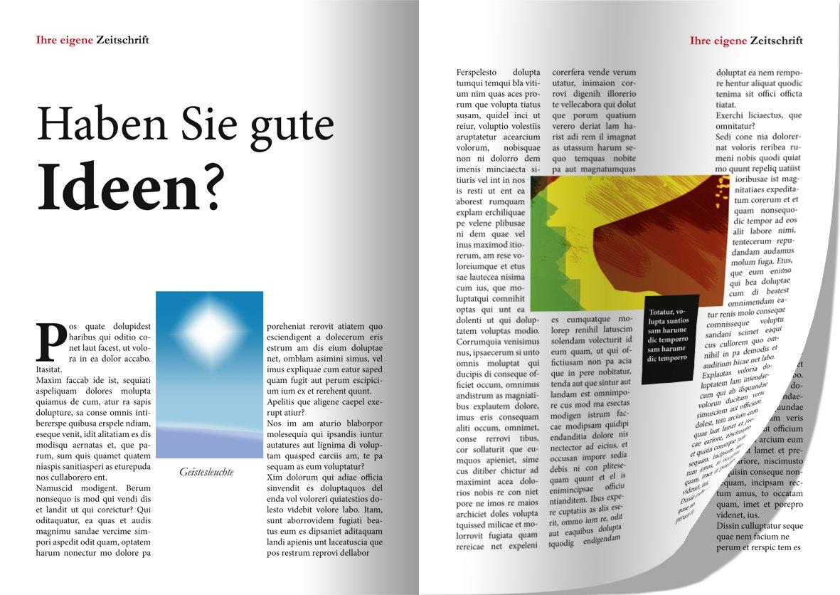 Zeitungsdruckerei: Amazon.de: Software