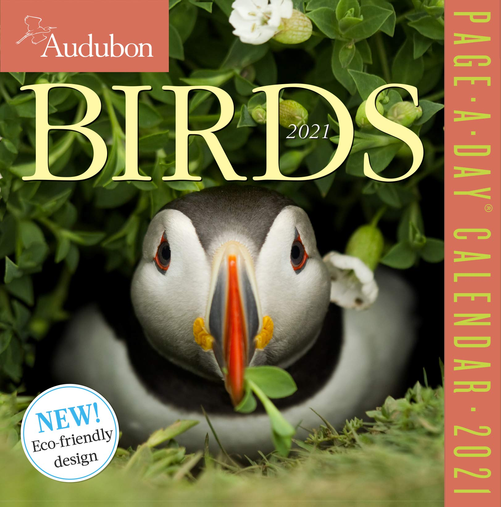 Audubon Bird Calendar 2021 Amazon.com: Audubon Birds Page A Day Calendar 2021 (9781523508990