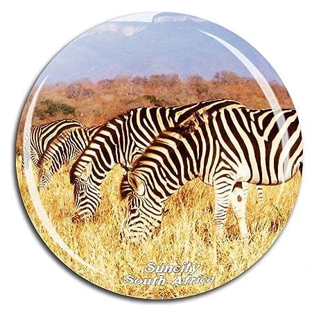 Zebra Parque Nacional Pilanesberg Suncity South Africa Imán de ...