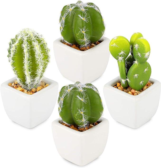 Artificial Desktop Succulent Arrangement Plant Country Farmhouse Succulent Arrangement Artificial Cactus Cactus Farmhouse Pig