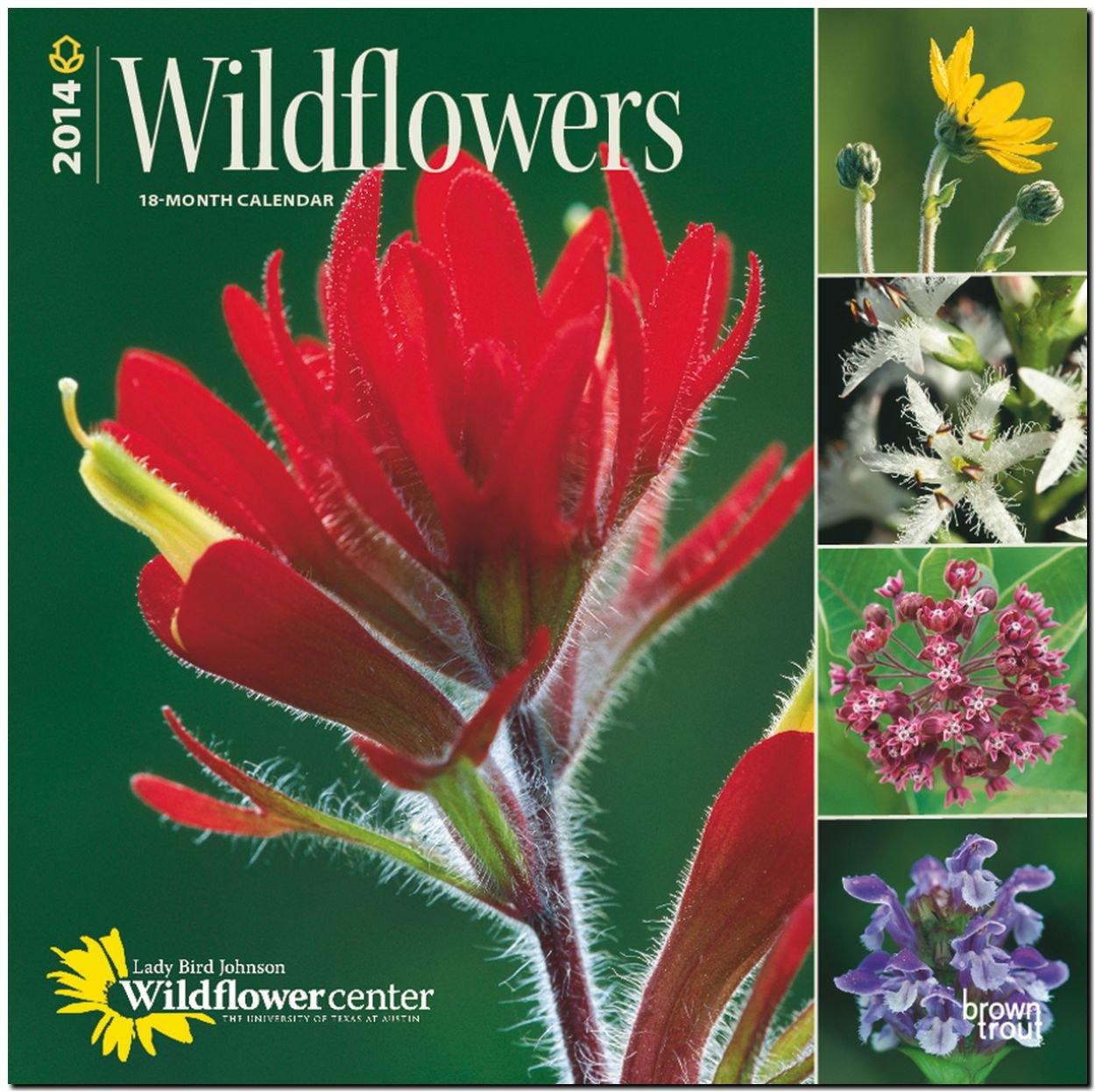 Wildflowers 2014 - Wildblumen: Original BrownTrout-Kalender [Mehrsprachig] [Kalender]