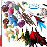 SenYoung 27PCS Cat Toys Kitten Toys, Interactive Cat Toy Set including Cat Teaser Wand, Catnip Fish, Cat Teather Toy, Feather
