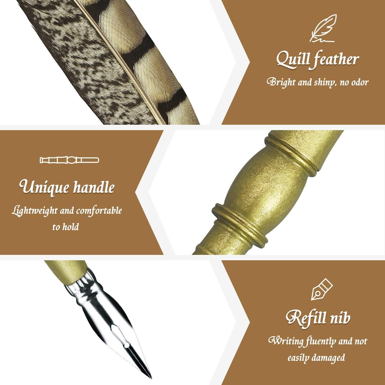 Hethrone Plum set de calligraphie au stylo plume avec 4 pi/èces mod/èles et 3 encres