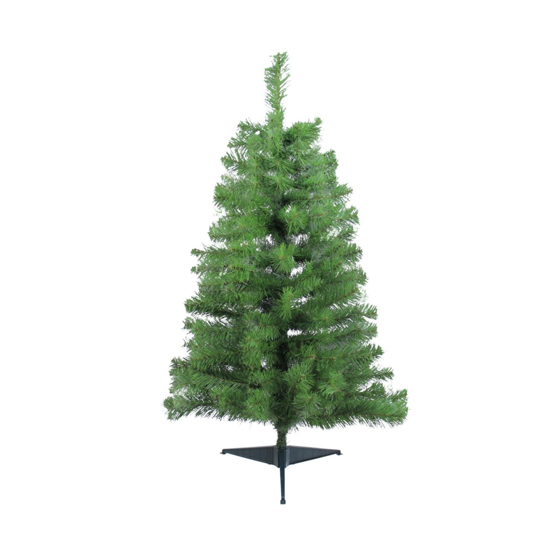 Noble Fir Tree: Amazon.com
