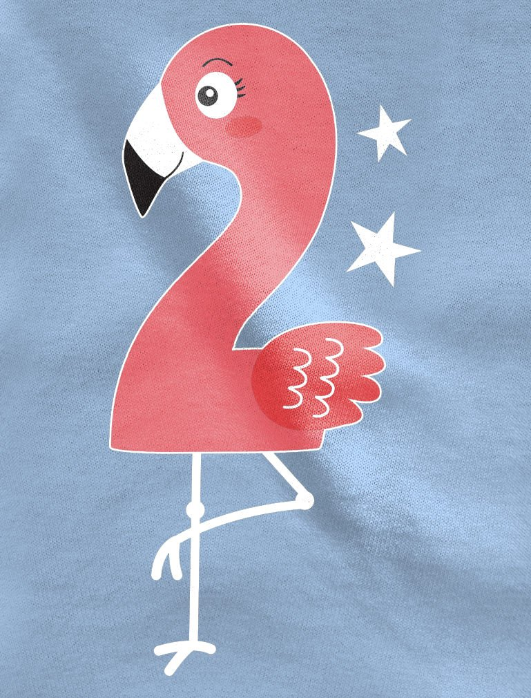 Flamingo 2nd Birthday Gift for Two Year Old Toddler/Kids Girls' Fitted T-Shirt