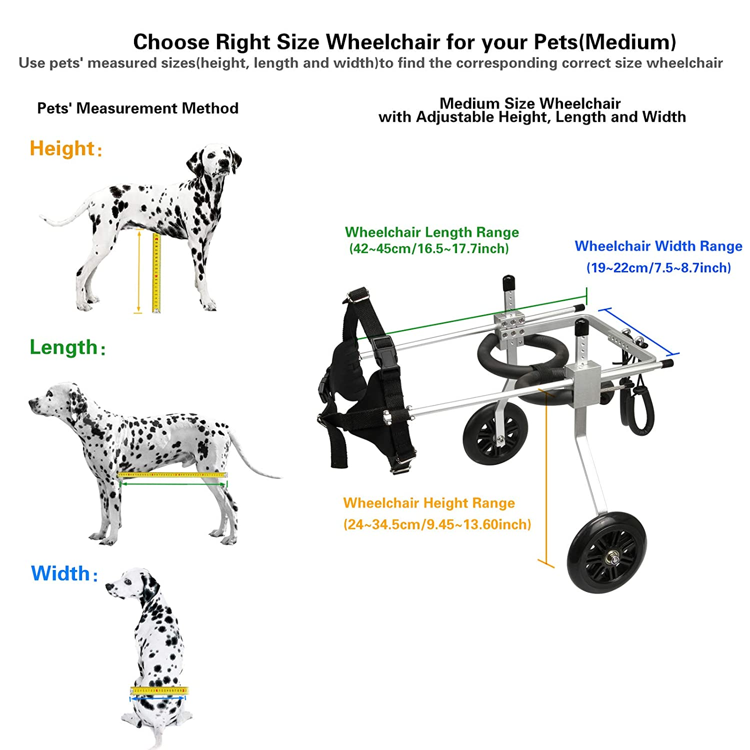 Amazon.com : Anmas Box Adjustable Dog Pet Wheelchair for Hind Legs Rehabilitation, 2 Wheels Dog Cart Wheels (M-(Hip Height: 12