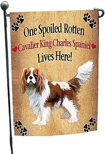 Cavalier King Charles Spaniel Spoiled Rotten Dog Garden Flag