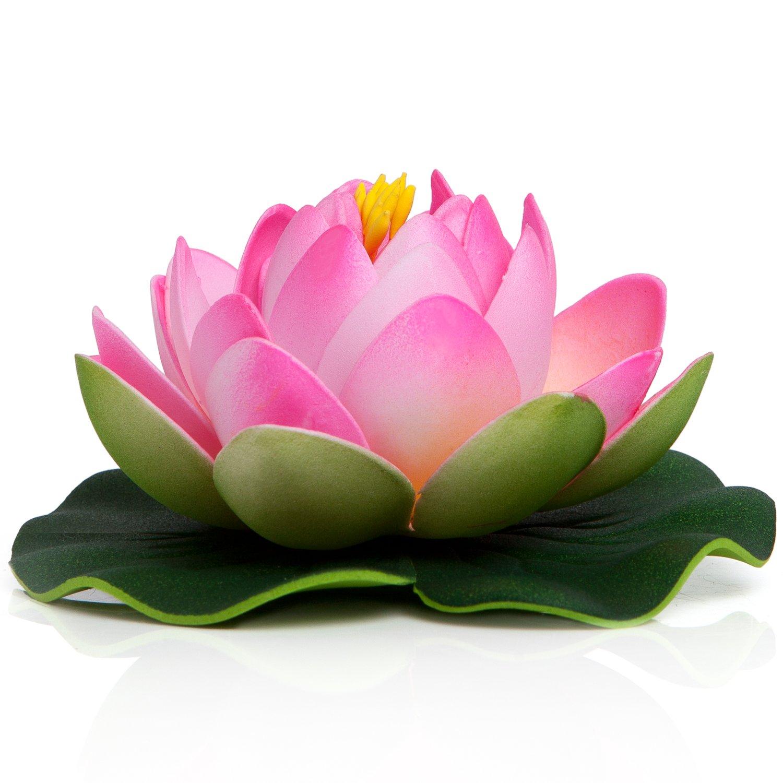 Amazon.com: BEST FLOATING FLOWERS SET of 8 for Weddings - Pools ...