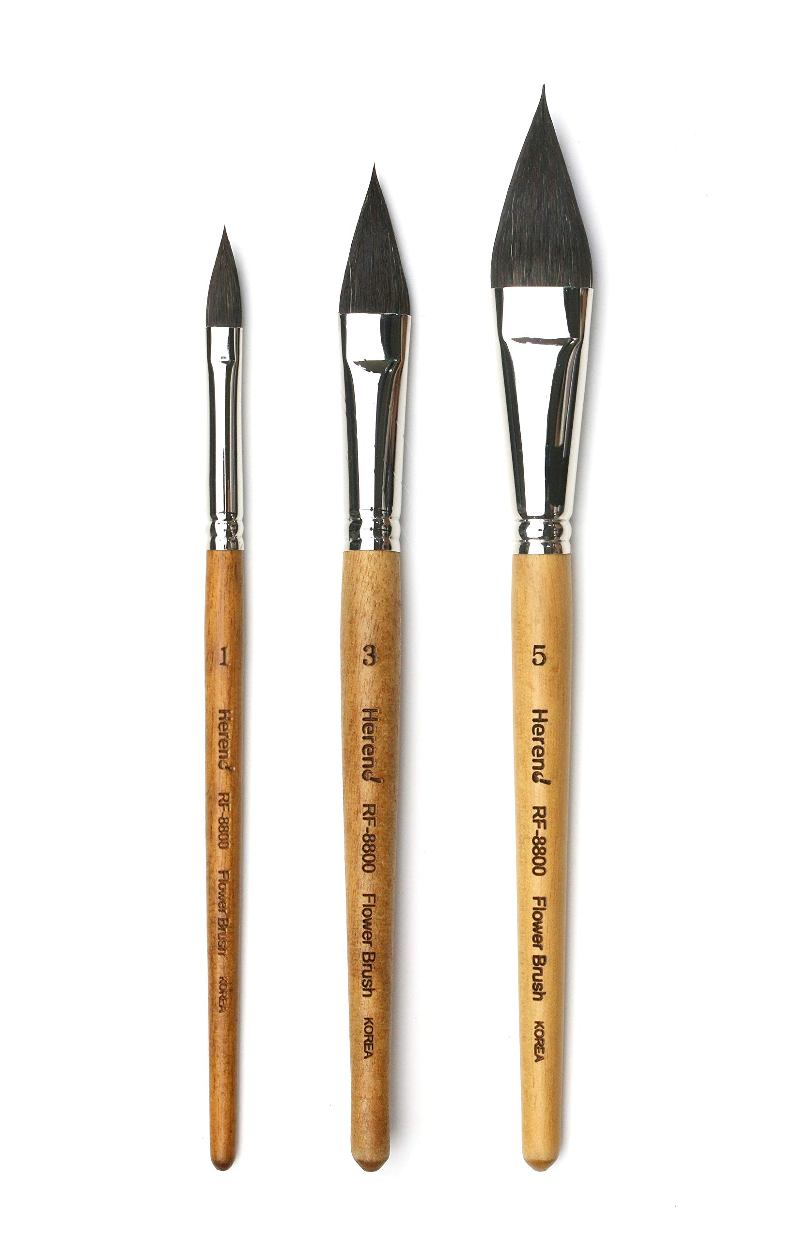Herend Brush Series RF-8800 (No.1 ~ No.5) for Watercolor with Squirrel Hair/Filbert Ponited Paintbrush (No.14) (Set (1,3,5)) by Herend Brush
