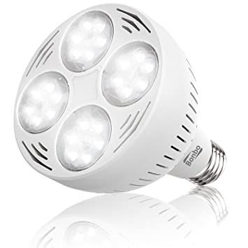 led pool daylight white swimming light bulb jandy not working floating jellyfish lights amazon