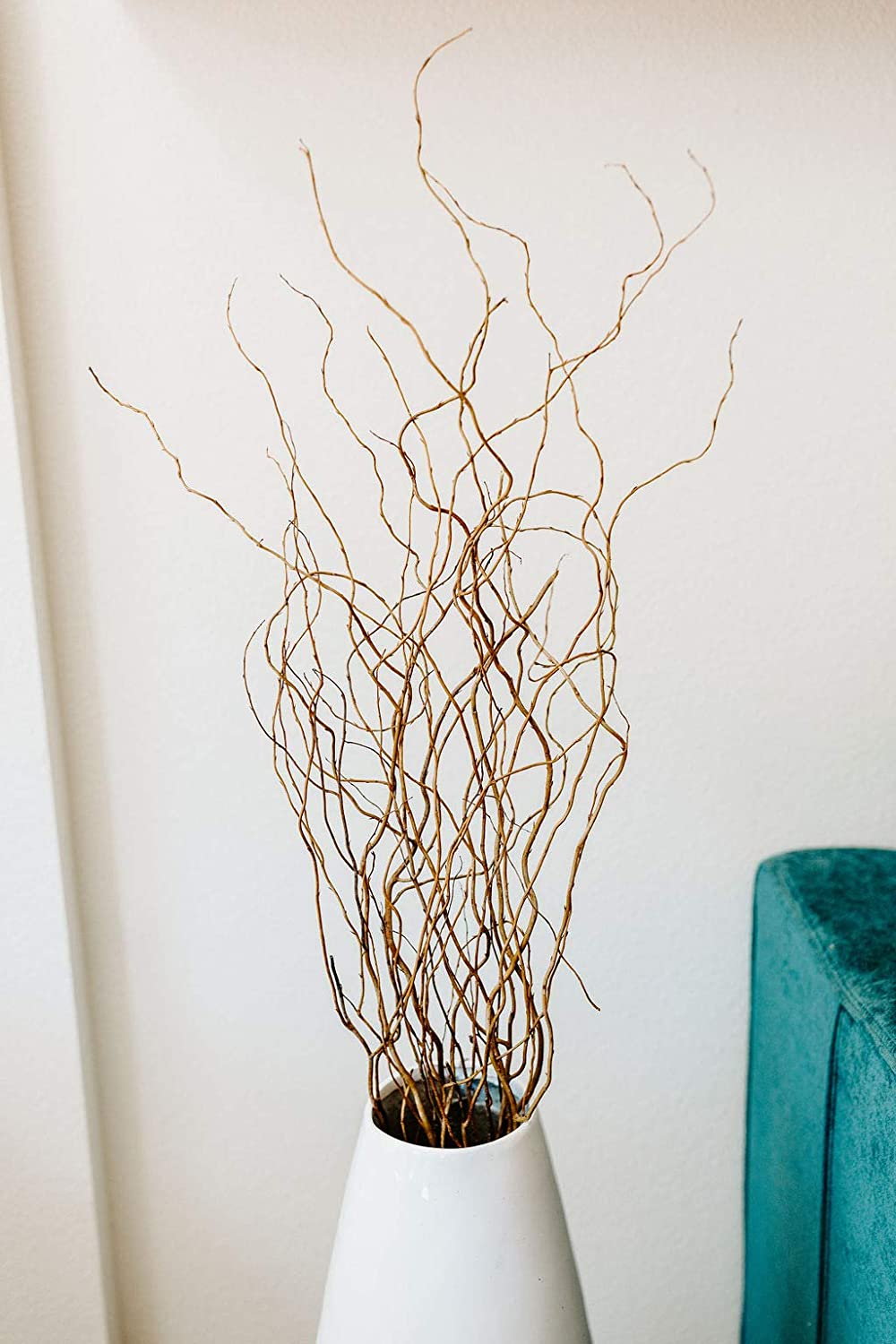 Green Floral Crafts - Curly Willow Branches, 6-6.5 Ft Tall - Natural & Caspia Floral Accent