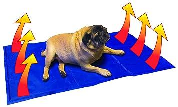 MP Essentials – estera alfombrilla refrescante para perro de mascota – 90 cm x 50 cm: Amazon.es: Productos para mascotas