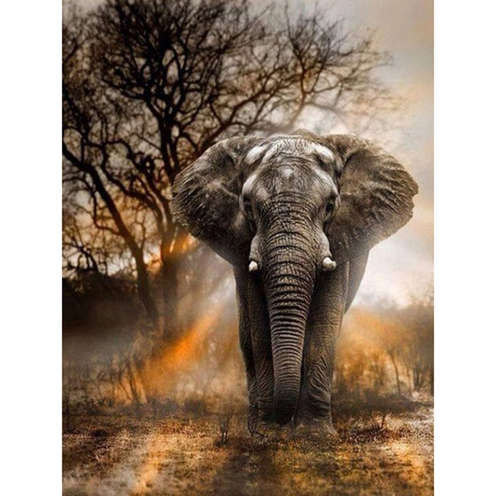 Diamond Painting Full Square 5D DIY Drill Elephant Animals Rhinestone Embroidery Arts Craft Adults' Children's Paint-by-Number Kits Cross Stitch for Home Decoration 12X16 inches (Elephant)