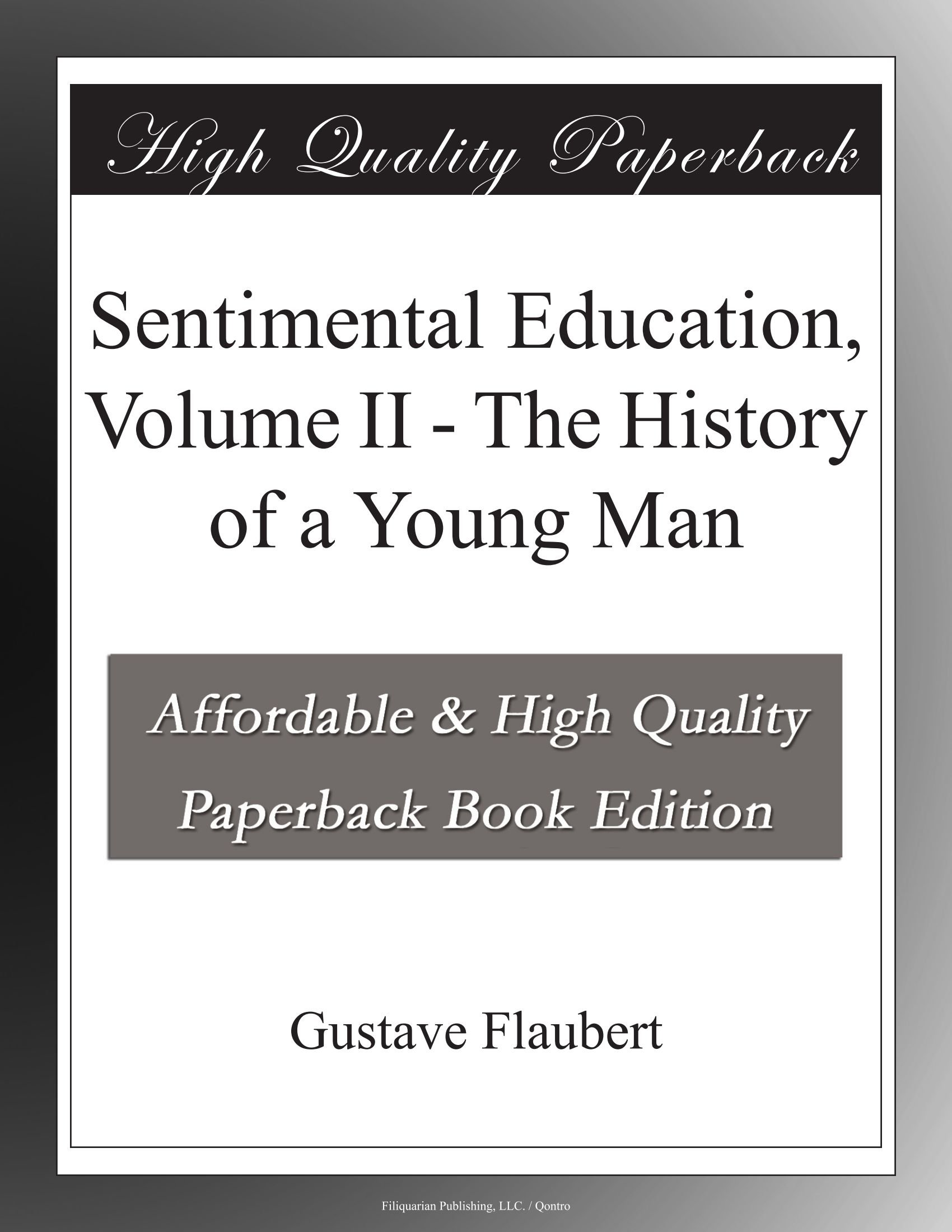 Sentimental Education, Volume II - The History of a Young Man pdf