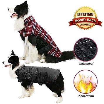 Amazon.com: Chaqueta para perro TPYQdirect impermeable ...